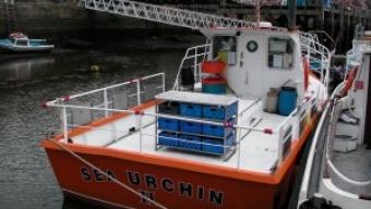 Sea Urchin II – Whitby