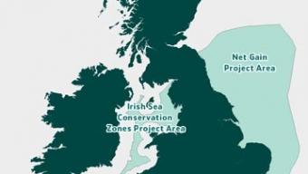 Irish Sea Conservation
