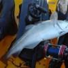 Fylde Coast Kayak Report