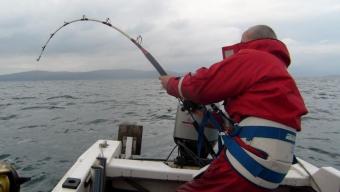 Sound of Jura – Common Skate Fishing